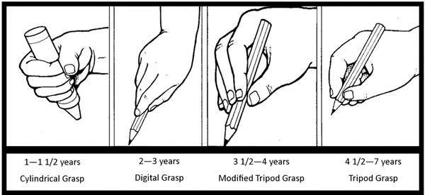 prise-crayon-enfants-etapes